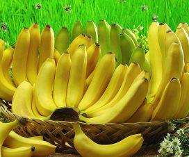 manfaat jantung pisang