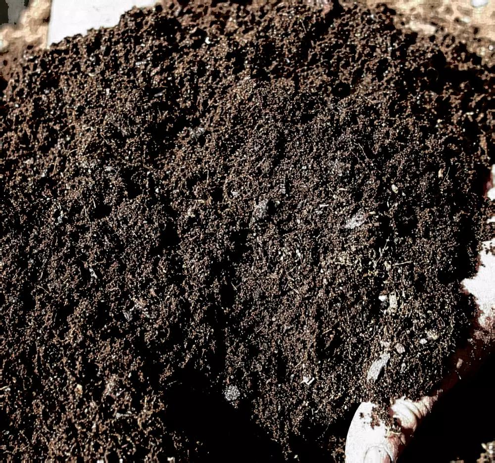 cara membuat pupuk kompos dari daun