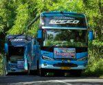 ibistrans.com sewa bus pariwisata armada jaya perkasa