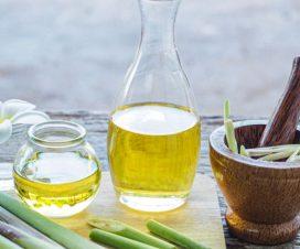 cara pembuatan minyak atsiri dari sereh