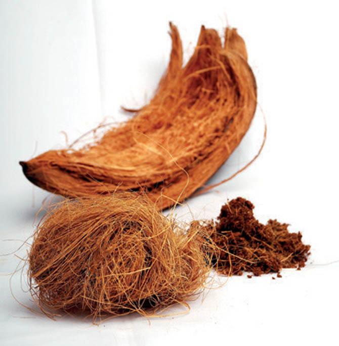memanfaatkan sabut kelapa